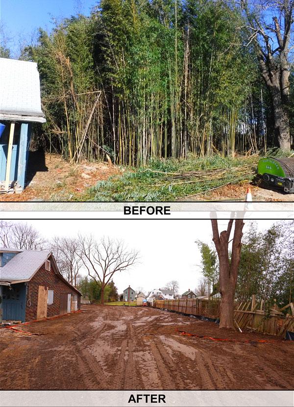 before-after-1v
