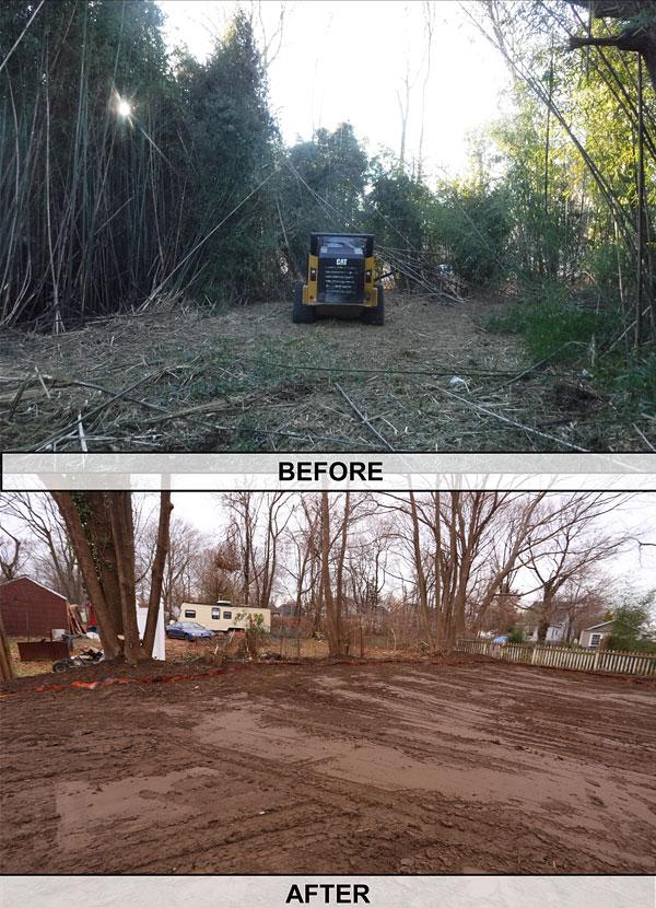 before-after-8v