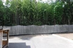 Bamboo Barrier 3