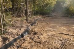 Bamboo Barrier 16