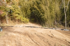 Bamboo Barrier 19