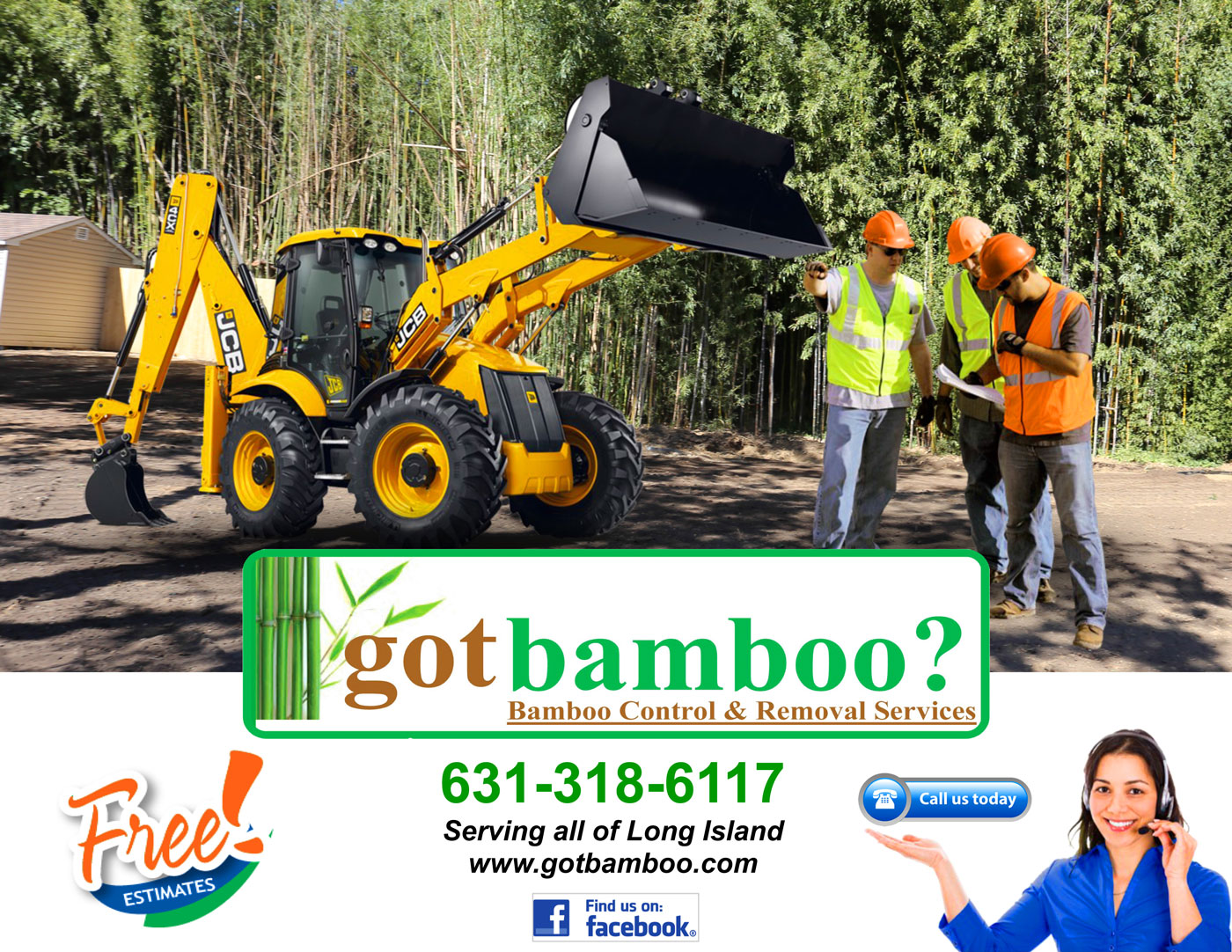 Got Bamboo? - Bamboo Removal